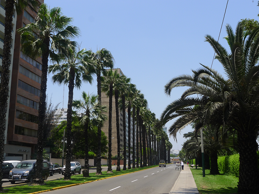 Lima, Peru. November 10, 2015. Coronel Portillo avenue in San Isidro district of Lima. In the view are exterior buildings, incidental people, palms, lawn, vehicles, pedestrian ways, lampposts in a beautiful and blue sky day. This photo was taken by a Lumix camera equipped with a Leica lens.